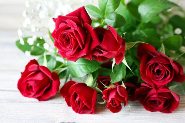 薔薇 バラ 夢占い