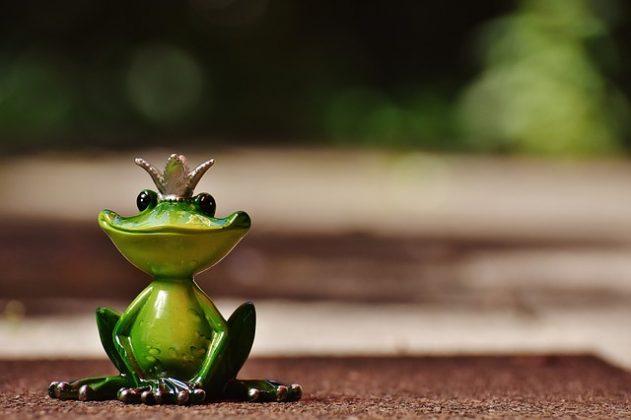 蛙 オタマジャクシ 夢占い