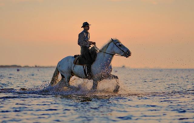 馬 夢占い