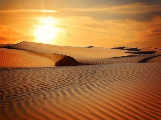 砂漠 夢占い